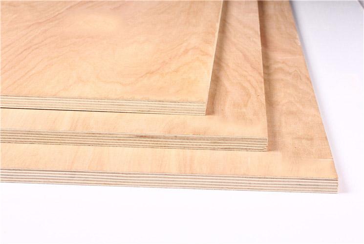 20MM杨木芯多层板