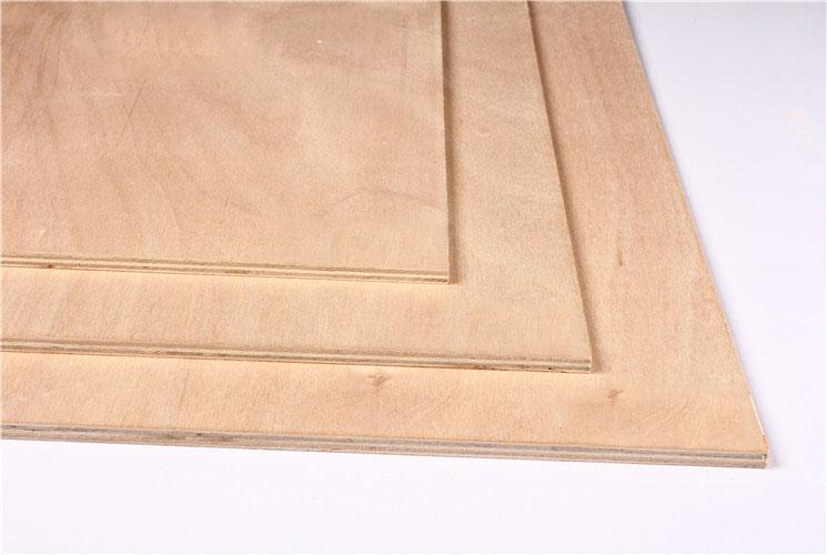 9MM杨木芯多层板