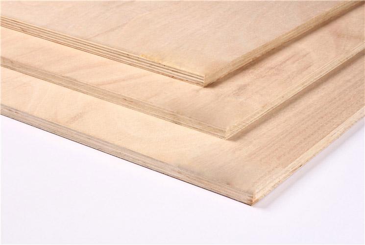 12MM桉木芯多层板