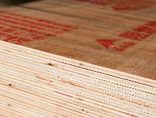 桉木芯阻燃胶合板12MM